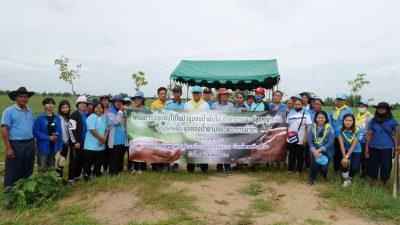 โครงการปลูกต้นไม้ในป่าชุมชน ป่าต้นไม้ ป่าสาธารณะ ปลูกหญ้าแฝก อนุรักษ์ฟื้นฟูแหล่งน้ำตามแนวพระราชดำริฯ